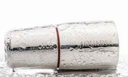 Wasserwirbler Aquadea ToneOne Crystal Trinkwasser-Wirbler Silber Bergkristall. Hochfrequenz-Verwirbelung in Tradition mit Schauberger und Hacheney. Geometrien der Wirbelkammer nach dem Goldenen Schnitt u. Blume des Lebens - Torus - 1